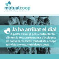 mutualcoop
