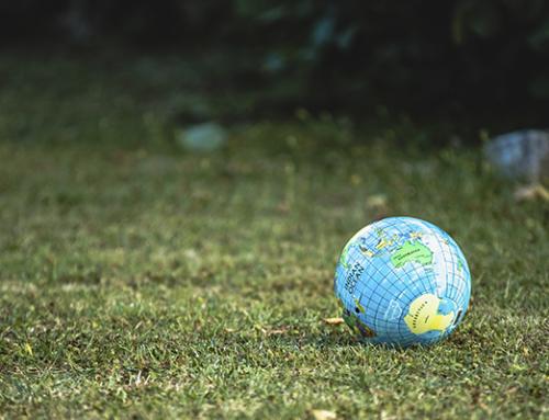 Arç Cooperativa ens sumem a les mobilitzacions mundials pel clima