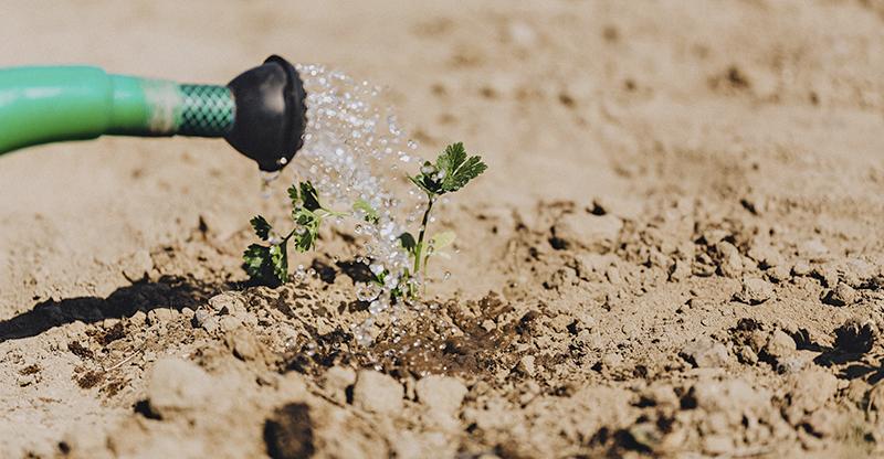 assegurances pagesia ecològica 2021